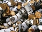 Drewno,kora,zrebki z Ukrainy.Cena 15 zl/m3