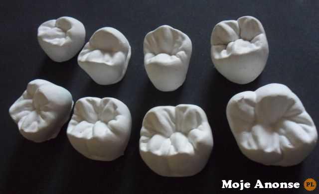Technik dentystyczny nauka 0 zł