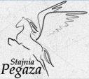 Ośrodek Pegaz - obozy jeździeckie