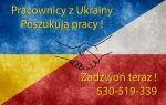 Pracownicy z Ukrainy szukają pracy - od zaraz !!!