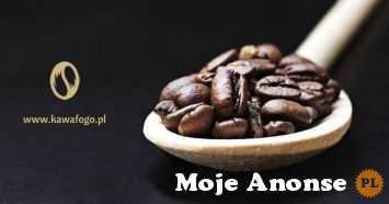 Najlepsza kawa w ziarnach od Fogo