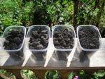 Ukraina. Nawozy organiczne, torfowe od 40 zl/tona. Zaklad