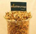 Słody pszeniczne Malteurop