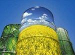 Ukraina.Olej rzepakowy 2,3 zl/litr,nasiona,sloma,biomasa,tluszcze