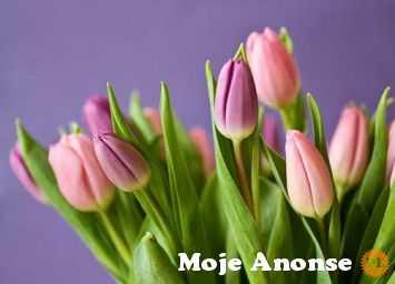 Kurier kwiatowy Lublin