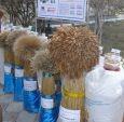 Ukraina.Srodki ochrony roslin,zaprawy pasz. Nasiona, nawozy